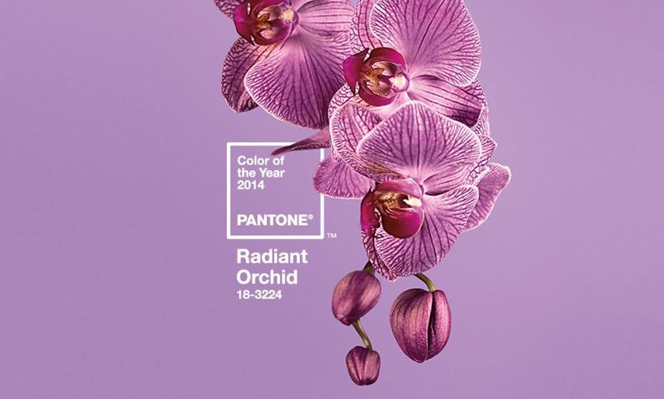 2014: A orquídea radiante Pantone 18-3224 pretendia intrigar e despoletar a imaginação e a criatividade