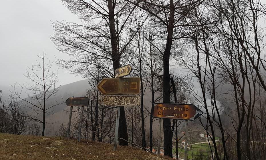 Não podemos deixar de lhe mostrar imagens de como os incêndios assolaram e devastaram a região.