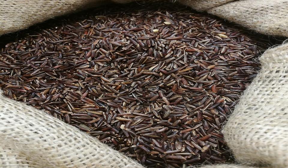 Grãos integrais. Estes são grãos não refinados e ricos em fibra, digeridos pelas bactéricas saudáveis do intestino, como a Bifidobacteria.