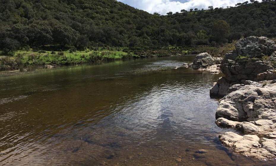 Percorriam longas distâncias a pé por terras alentejanas e andaluzes, ultrapasando campos e cursos de água.