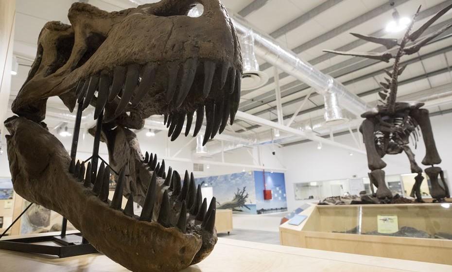 Dino Parque – Parque dos Dinossauros da Lourinhã