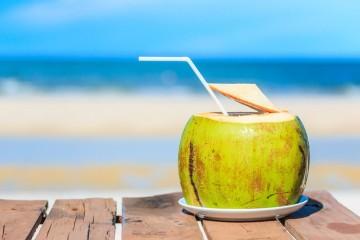 O sumo natural que se encontra dentro do coco é uma das bebidas mais apetecíveis, por ser saborosa, pouco calórica e benéfica para a saúde. Conheça a sua ação.