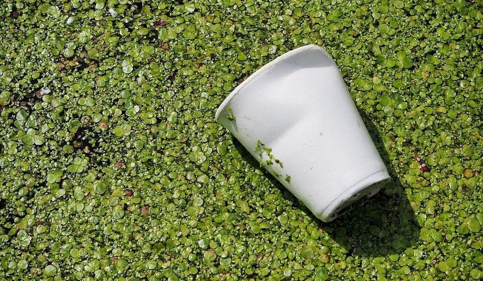 Cerca de 10% da poluição gerada pelos humanos é de produtos de plástico, sendo que 50% dos plásticos são utilizados uma única vez.