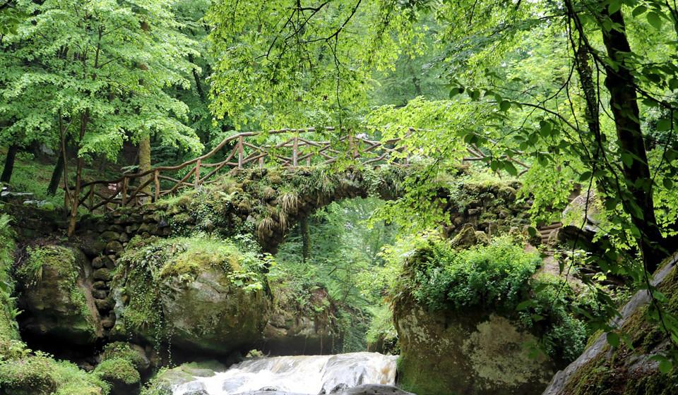 Mullerthal, Luxemburgo. Na região de Mullerthal, apelidada de 'A pequena Suíça do Luxemburgo', o visitante pode passar férias divertidas e aventureiras. Entre os trilhos irão poder descobrir formações rochosas, vales de riachos e ter uma vista incrível do vale do rio Sûre.