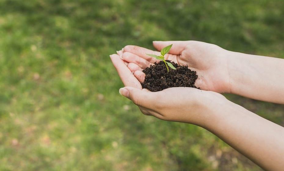 Além de reciclar e plantar uma árvore, saiba que medidas pode tomar no seu dia a dia para ajudar a cuidar do nosso planeta. Pouco a pouco, fazemos muito.