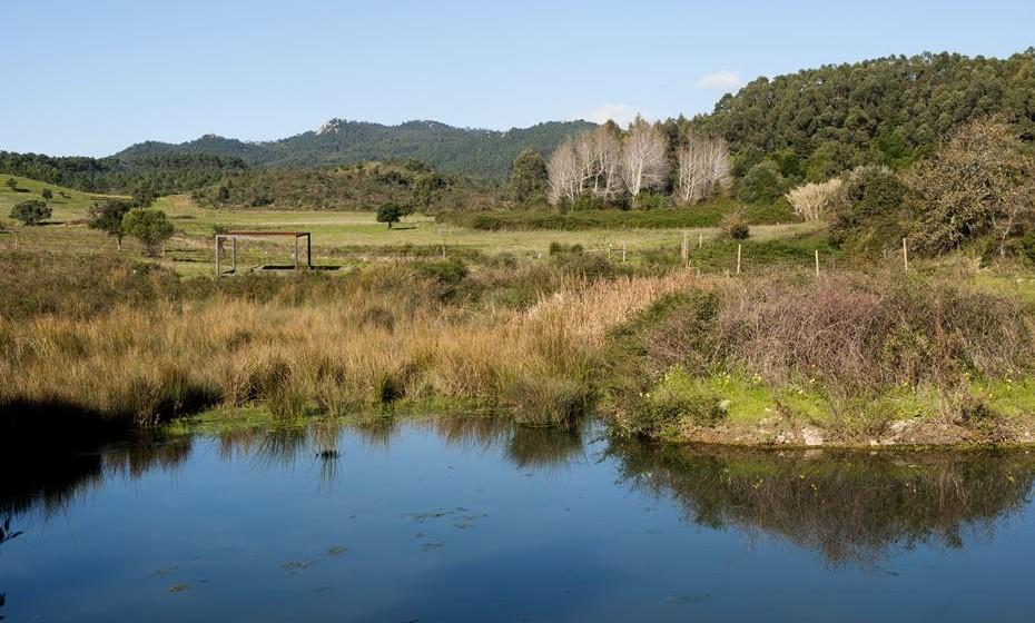 Mostrar e preservar o património paisagístico natural da região é a forma de alertar para a necessidade de conservação da natureza.