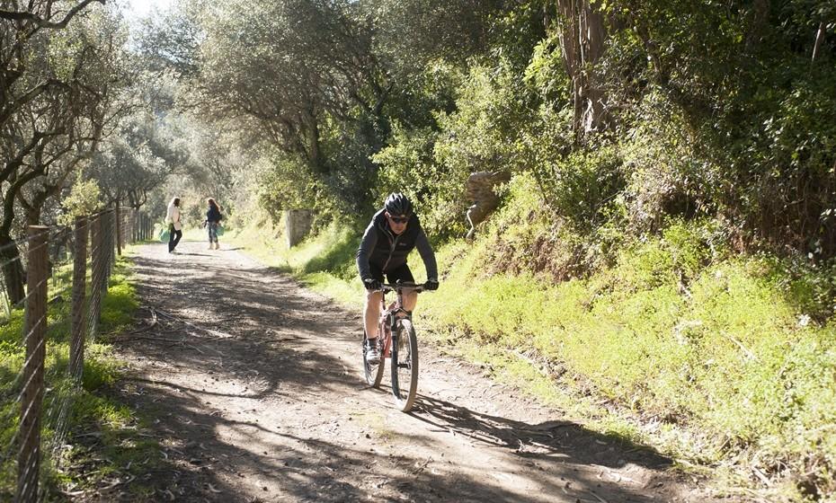 A quinta tem um percurso principal com cerca de  4 Km e percursos secundários com cerca de 20 km.