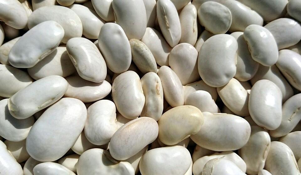 Feijão branco - Só uma pequena chávena das inúmeras variedades existentes de feijão branco tem o dobro de potássio que uma banana. Para além de ser bastante rico em potássio, o feijão branco oferece vitaminas do complexo B, ferro, proteínas vegetais ou fibra. O feijão branco pode ser consumido em sopas ou saladas.