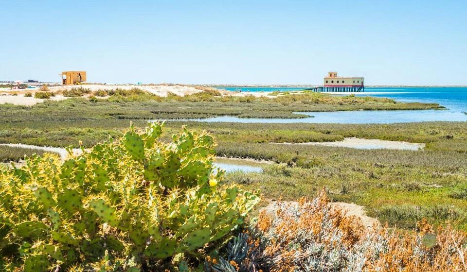 Fuseta (Portugal) - Novamente por terras portuguesas. Em plena ilha da Armona poderá encontrar a praia da Fuseta. Areia fina, águas azuis turquesa, calma e romântica. Estas são algumas das qualidades da praia da Fuseta, um ótimo local para passar férias e se o fizer ao lado do seu amado/a ainda melhor.
