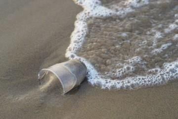 A disseminaçãojá é de tal ordem que 83% da água potável no mundo contém vestígios de partículas de plástico. Este é um grave problema de poluição quese prevê que duplique nos próximos 15 anos, caso se mantenha a atual tendência. Conheça mais factos sobre o impactoque os plásticos estão a ter no mundo.