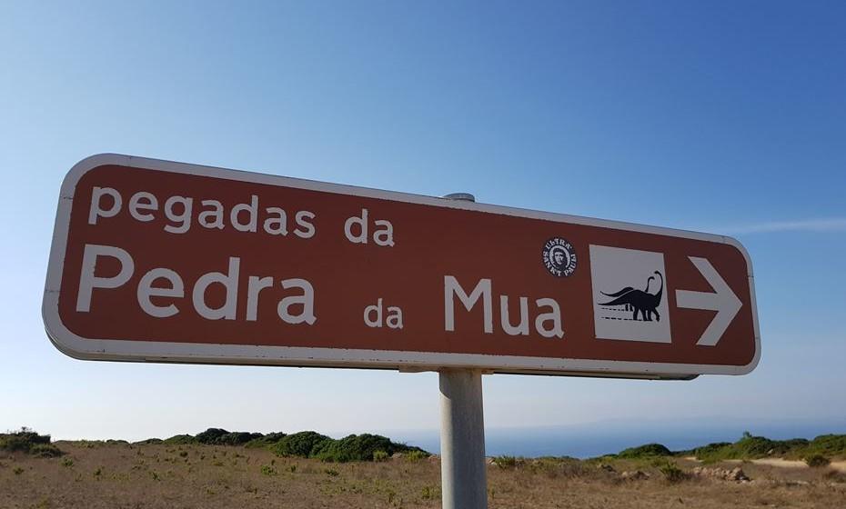 Junto ao Cabo Espichel, é necessário fazer um percurso a pé de cerca de 5km para chegar às pegadas de dinossauro.