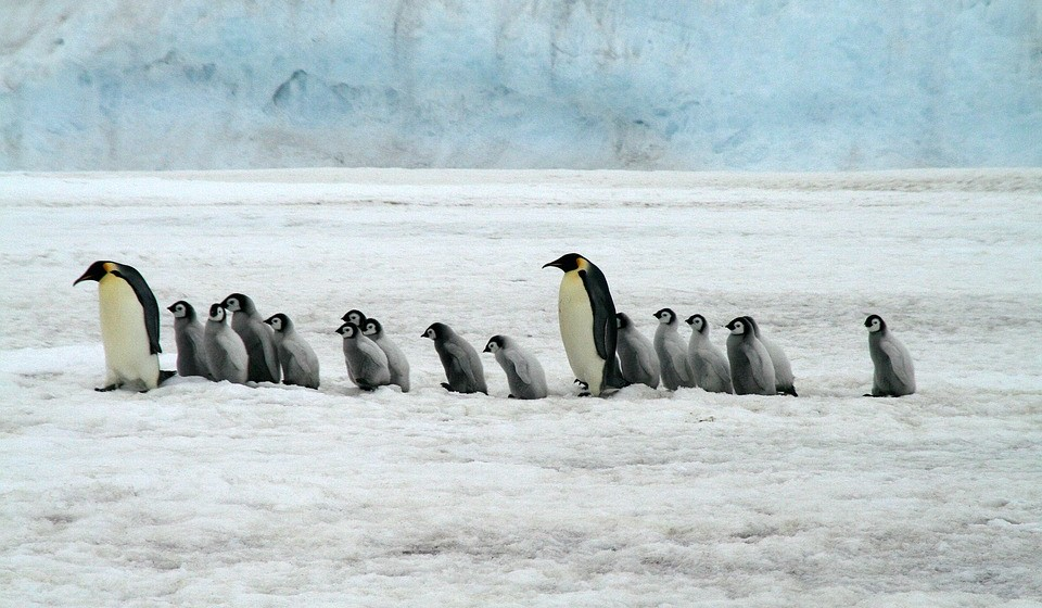 Montes Ellsworth, Antártica