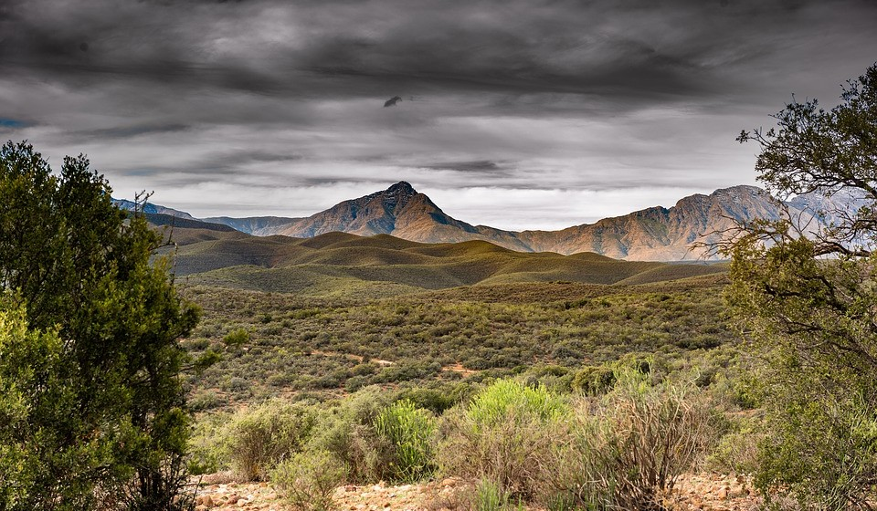 Savana Africana, África do Sul