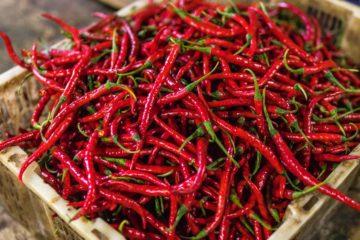 Descubra de seguida o ranking das 10 pimentas mais picantes do mundo em 2020, divulgado pelo site PepperScale, que se dedica a divulgar informação sobre o mundo das pimentas.