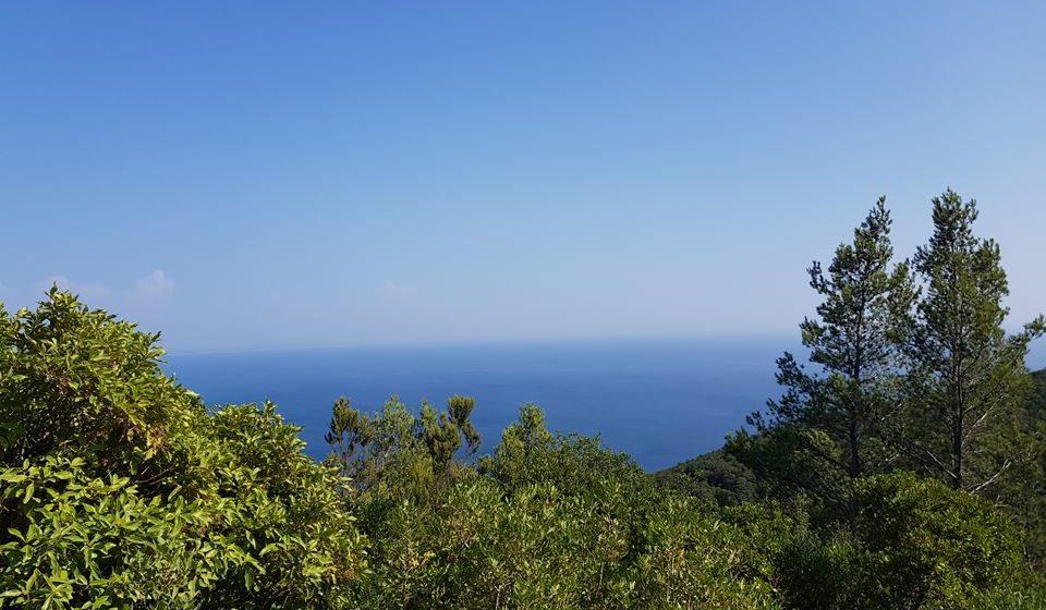 Arrábida (Portugal) entre o mar as falésias