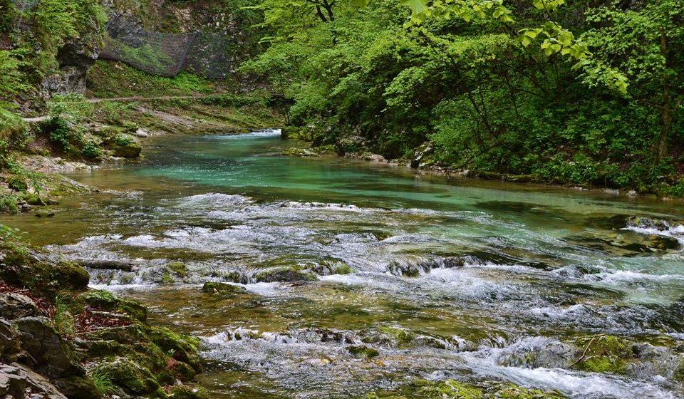 Natureza selvagem e intacta em Triglav (Eslovénia)