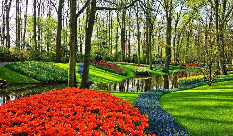 Keukenhof & Zaanse Schans, Holanda - Visitar os jardins de Keukenhof é uma das atividades mais interessantes da Páscoa na Europa. Centenas de milhares de tulipas coloridas crescem por lá todos os anos e são admiradas pelos visitantes nesta altura do ano. Também pode ver um tradicional fabricante de tamancos a trabalhar, caminhar pela bonita vila de Zaanse Schans e admirar os seus moinhos de vento.