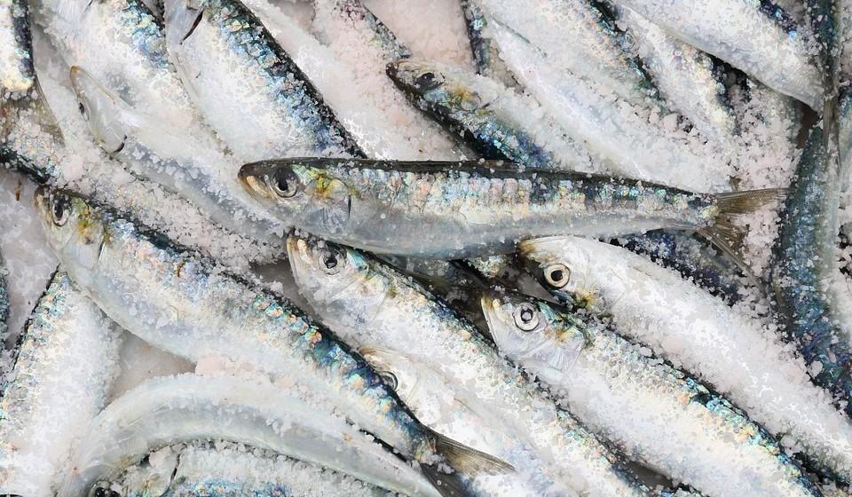 Consumir pescado nacional de acordo com a estação e com o tamanho mínimo exigido por lei.