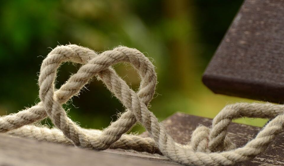 Algumas atividades lúdicas como jogos tradicionais, saltar à corda ou videojogos ativos promovem a aptidão cardiovascular, a força muscular e o equilíbrio.