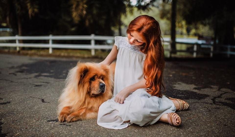 As Terapias Assistidas por Animais são intervenções complementares orientadas por objetivos específicos onde um animal, que reúne certos critérios específicos, forma parte integral do processo terapêutico.