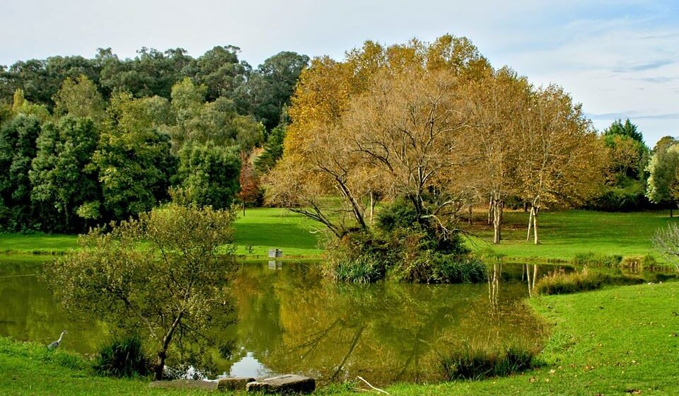 4 Parque da cidade, crédito Vitor Ribeiro via Flickr