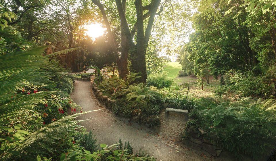 Parque de Monserrate - Vale e Ruina - ©PSML-EMIGUS