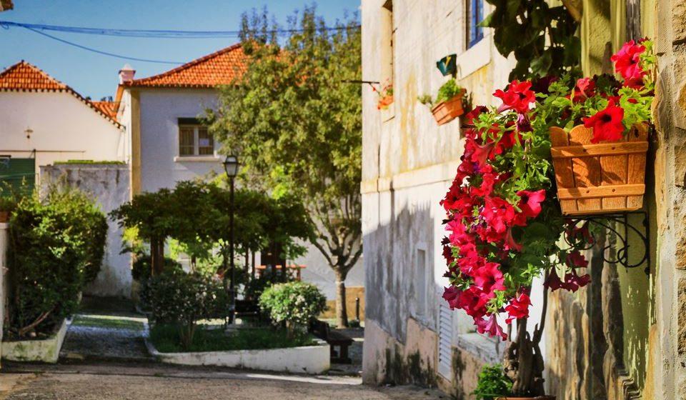 Perspetivas de Azeitão. Foto: Câmara Municipal de Setúbal.
