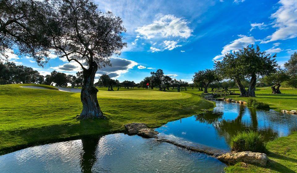 Quinta de Cima