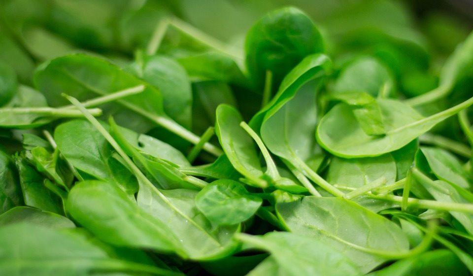 Os vegetais de folha verde escura são outra boa opção.