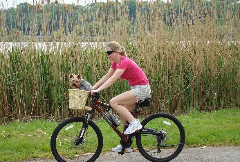 Exercício ao ar livre: Depois de um dia intenso de trabalho, nada melhor do que uma corrida junto ao rio ou alguns exercícios num parque público. Aproveite para convidar umas amigas e, enquanto fazem desporto, podem colocar a conversa em dia.