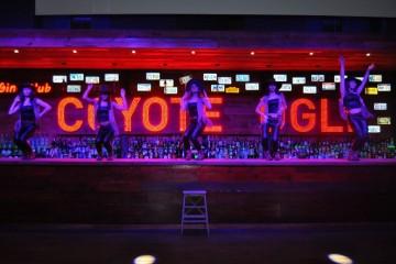 """Recorda-se do filme """"Coyote Bar""""? Onde belas bailarinas subiam ao balcão para dançar e animar a noite? Pois é, agora já existe um espaço com o mesmo conceito em Lisboa. O local ideal para jantar e se deixar envolver pelo espetáculo das coyotes pela noite fora. E nós fomos lá!"""