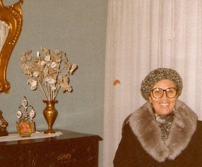 Em 1989, Ana Elisa falou sobre o Dia dos Avó pela primeira vez na Radio Televisão Portuguesa.