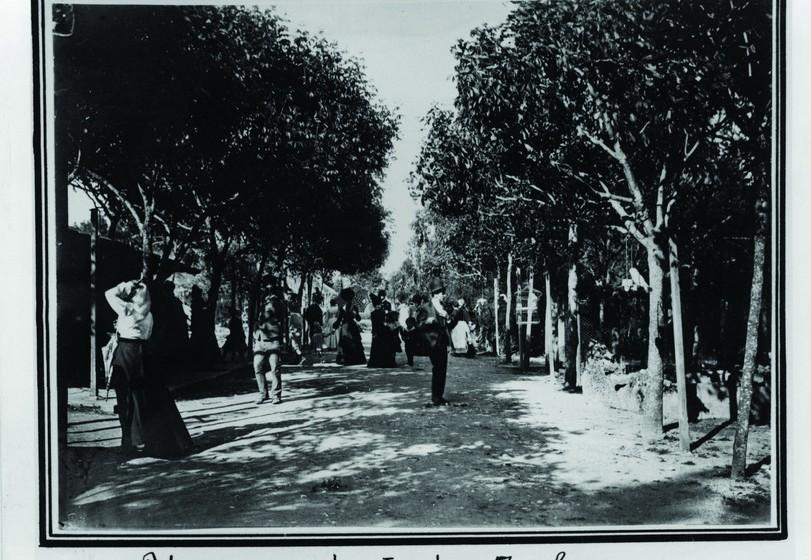 Em 1952, a Câmara Municipal de Lisboa galardoou o Jardim Zoológico com a Medalha de Ouro da Cidade.