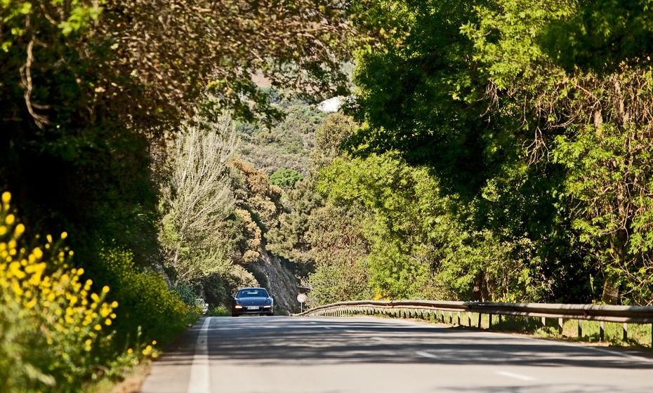 Para desenvolver o ADR, Hadley recorreu à geometria da estrada, o tipo de condução, a aceleração média, a aceleração lateral, o tempo de travagem e as distâncias, em três veículos da frota Avis Prestige: Porsche Carrera 911, Jaguar XKRS e um Mercedes E350. Foi definido o ADR ideal de 10:1 - 10 segundos em linha reta para cada segundo gasto numa curva. Com uma relação 11:1, a N222, oferece assim a melhor experiência de condução do mundo.