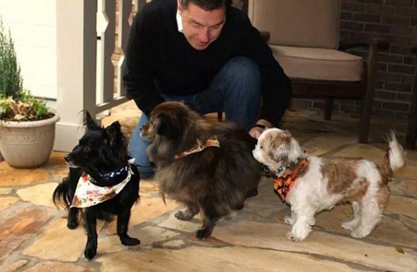 """É isto que acontece no hotel AloftAsheville Downtown, localizado na Carolina do Norte, nos Estados Unidos. A unidade hoteleira acolhe nas suas instalações cães resgatados por uma associação de proteção dos animais, a """"Charlie's Angels Animal Rescue"""",para que os clientes possam adotá-los."""
