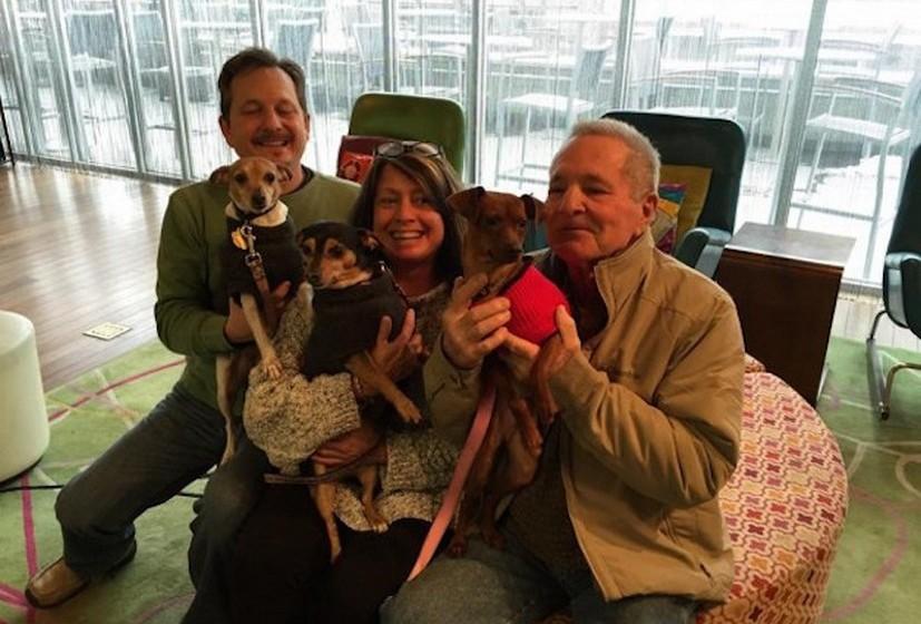 O sucesso do projeto é provado pelos números: desde o início do projeto, em julho de 2014, aproximadamente14 cãesjá conseguiram um novo lar.