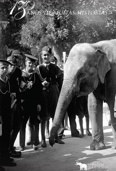 A queda do Estado Novo em 1974 e a consequente independência das antigas colónias em África significou a quebra do forte apoio prestado ao Jardim Zoológico pelas autoridades na diversificação e renovação da coleção animal.