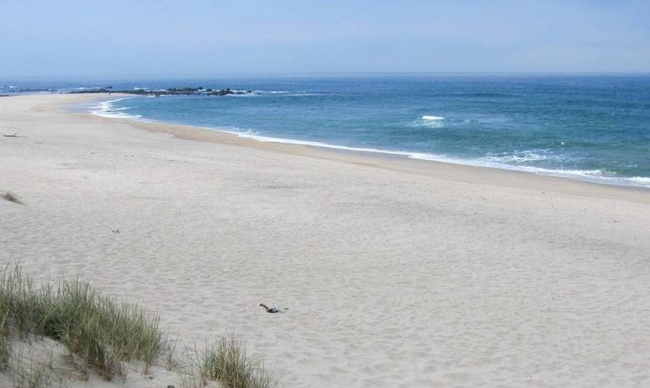 A agência de viagens online Rumbo selecionou as dez praias portuguesas com bandeira azul que garantem qualidade ambiental a quem as visita. Faça esta viagem pela costa portuguesa. Na imagem,  a praia da Arda, Viana do Castelo. A temperatura média no verão é de 19ºC e a da água 16ºC.