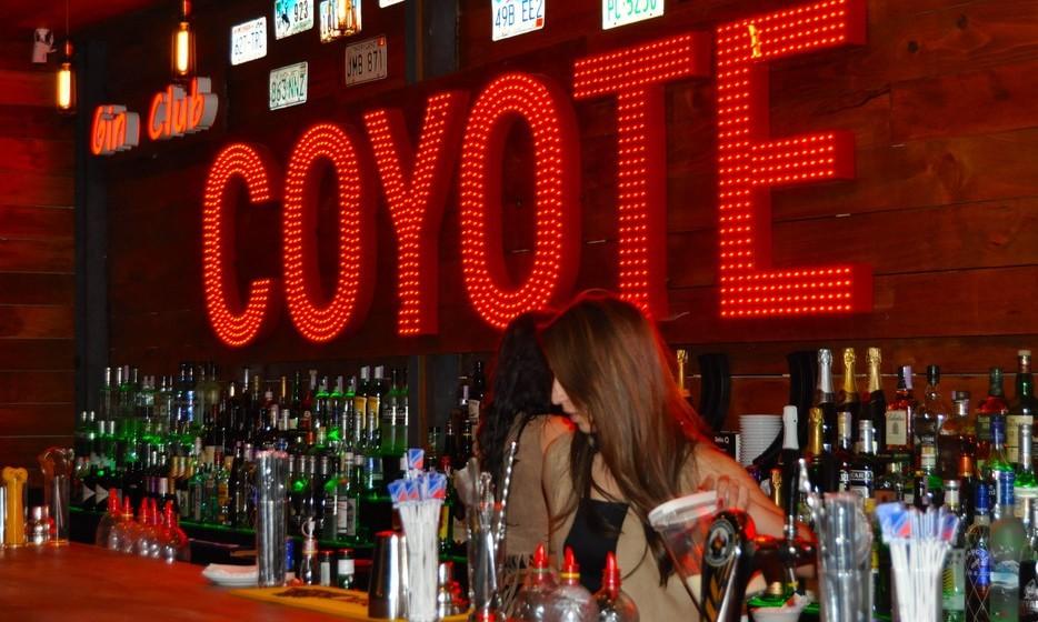 As caras do bar, as coyotes, cantam, dançam e são ainda barmaids.