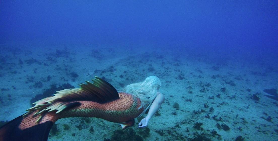 Tendo nascido na Florida, E.U.A., Melisa cresceu junto da água e foi desde sempre apaixonada pelo mar. Desde pequena, Melissa começou a desafiar as suas capacidades físicas debaixo de água e, aos 12 anos, já era capaz de ficar dois minutos e meio debaixo de água sem oxigénio.