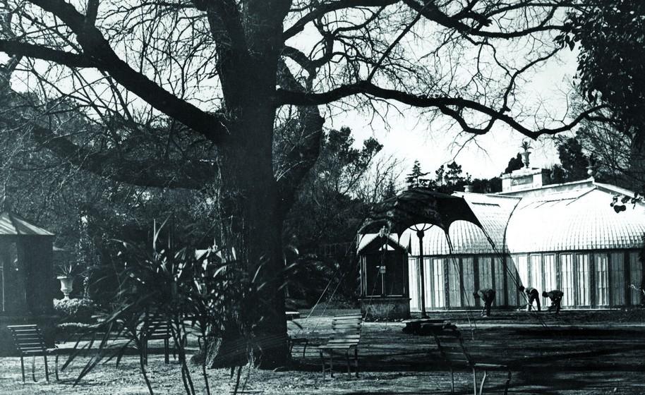 Promover a educação para a conservação junto do público visitante foi, também, uma das principais preocupações, que rapidamente mereceu a criação de um serviço próprio, o Centro Pedagógico. Na imagem, uma foto antiga do roseiral.