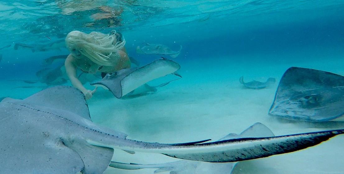 Além do seu site oficial, pode encontrar a Mermaid Melissa em todas as grandes redes sociais. (Por MOOD/ Joana de Sousa Costa. Fotos: Mermaid Melissa)